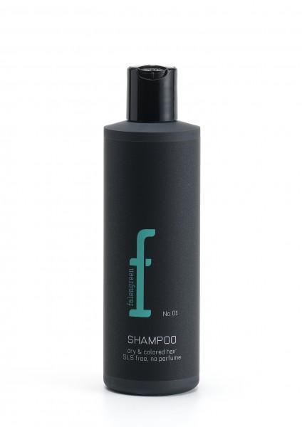 No. 1 Shampoo