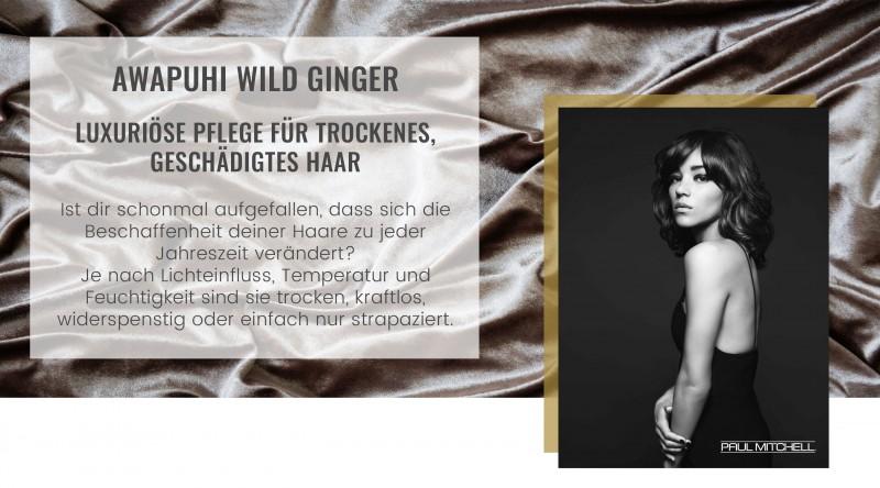 Paul Mitchell Awapuhi Wild Ginger luxuriöse Haarpflege für trockenes und geschädigtes Haar